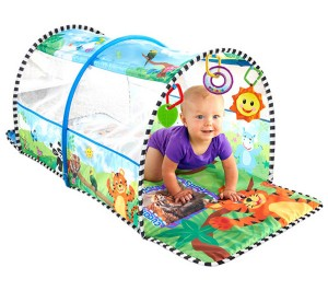 Safari Adventure Baby Einstein