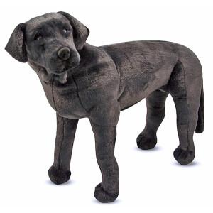 perro-labrador-negro-gigante