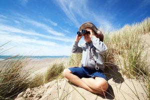 playa eplorador Inteligencia Naturalista